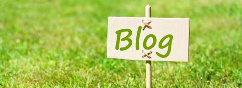 """Auf einer grünen Wiese steht ein Stab, an dem ein Schild mit der Aufschrift """"Blog"""" befestigt ist."""